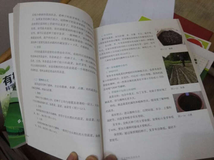 在希望的田野上农民继续教育系列教材:有机蔬菜家里种 晒单图