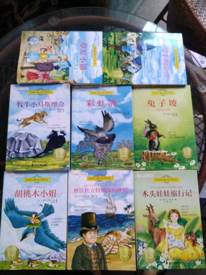 国际大奖小说系列儿童文学全8册 纽伯瑞儿童文学7-10岁小学生三四五六年级课外读物书籍兔子坡正版图书 晒单图