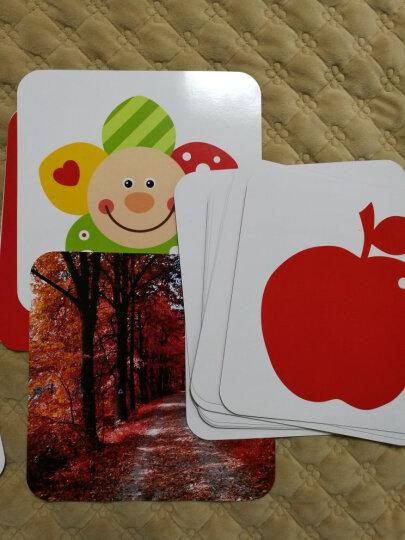 新生婴儿益智玩具早教闪卡宝宝视觉激发卡彩色卡黑白卡片儿0-3-6-12个月1-3岁初生儿启蒙认知卡 视觉激发卡4本装 晒单图