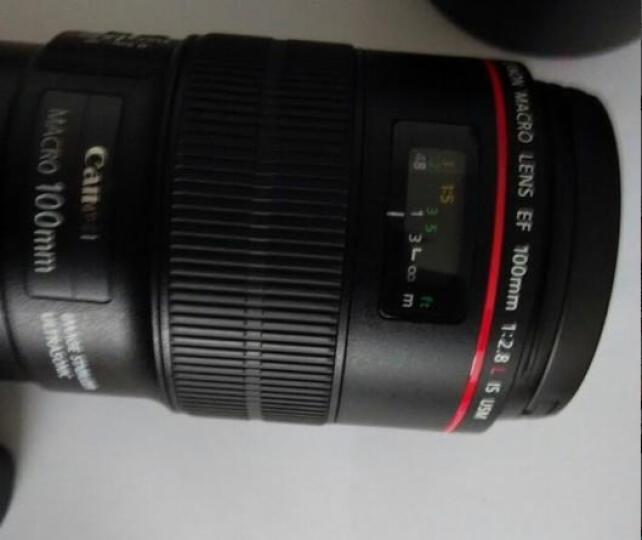 佳能(Canon) EF 100mm f/2.8L IS USM 微距镜头 晒单图