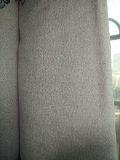 飞科(FLYCO)毛球修剪器 FR5006 充电式剃去毛球器 晒单图