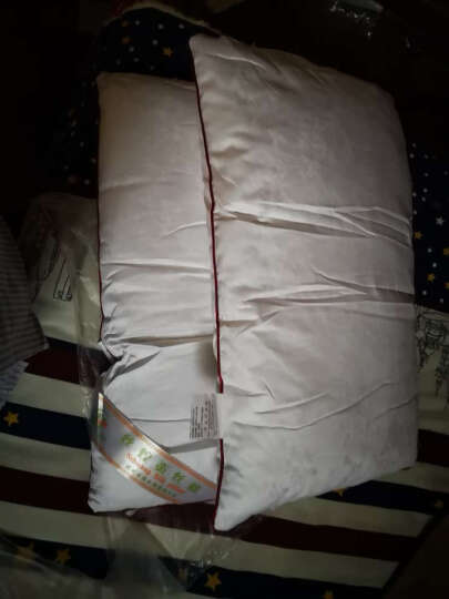 丝煌100%桑蚕丝枕头枕芯颈椎枕头芯单人全棉 儿童中枕(32x55)蚕丝400克 1只 晒单图