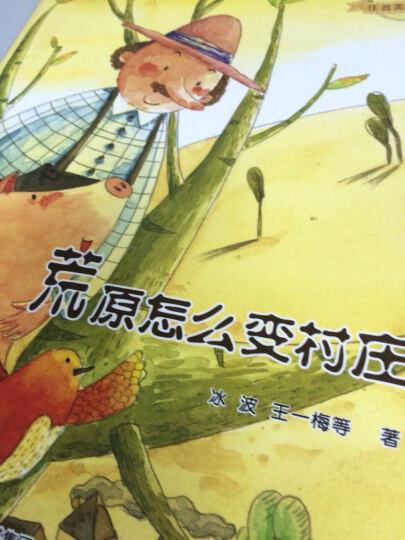 大自然温馨微童话集全套10册 王一梅童话系列注音版 七彩童话 3-6岁宝宝睡前故事亲子读物 晒单图