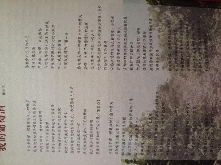 葡萄酒一本通 葡萄酒品鉴 学习入门知识 吴书仙 著 品红酒 葡萄酒知识普及书 晒单图