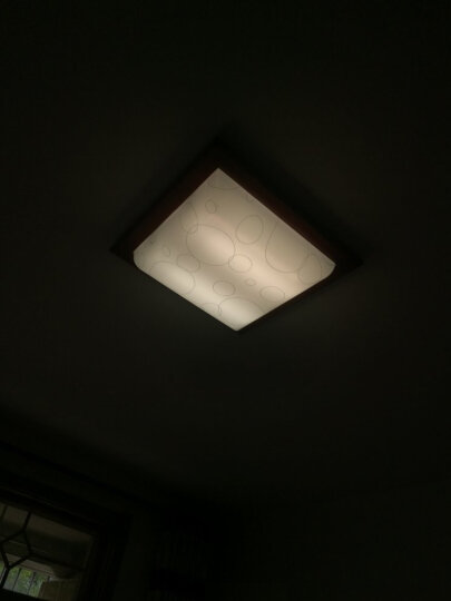 【鲁格】LED灯管h管平四4针H型节能灯管改造led光源横插灯管2g11 12瓦32厘米暖白光透明罩 晒单图