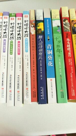 国际大奖儿童文学经典名著小木屋的故事:快乐的金色年代 晒单图