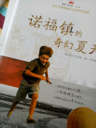 国际大奖小说(升级版):夏日历险 晒单图