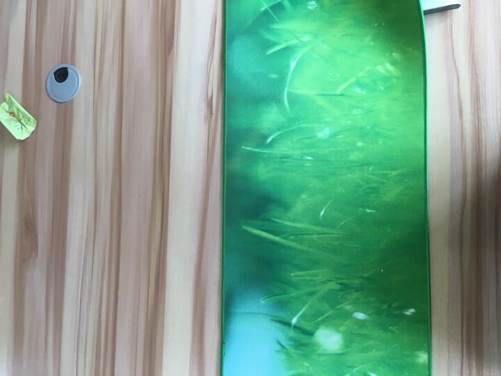 灵蛇 游戏鼠标垫超大号 加厚 精密包边 底部防滑 办公游戏皆宜 P19青草 晒单图