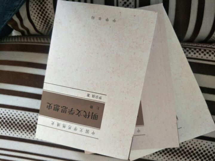 中国文学思想通史:宋代文学思想史 晒单图