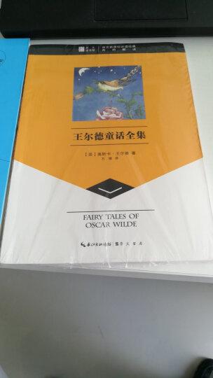 崇文读书馆·王尔德童话全集 晒单图