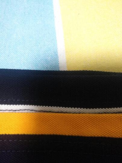 3号堡罗短袖t恤男翻领条纹大码POLO衫男士短袖宽松半截袖打底衫体恤 黄条8839 M170/88A 建议60公斤左右人群 晒单图
