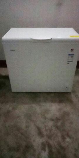 海尔(Haier) 202升家用冰柜 冷藏冷冻转换柜 冷柜 节能单温冰箱 BC/BD-202HT 晒单图