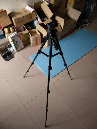 云腾(YUNTENG)VCT-1368RM 手机蓝牙遥控三脚架 微单数码相机摄像机自拍用 优质铝合金超轻便携三角架黑色 晒单图