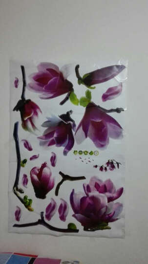 橘子燕 婚房客厅电视背景墙卧室可移除浪漫花墙贴纸床头装饰贴紫色花 爱无声 晒单图