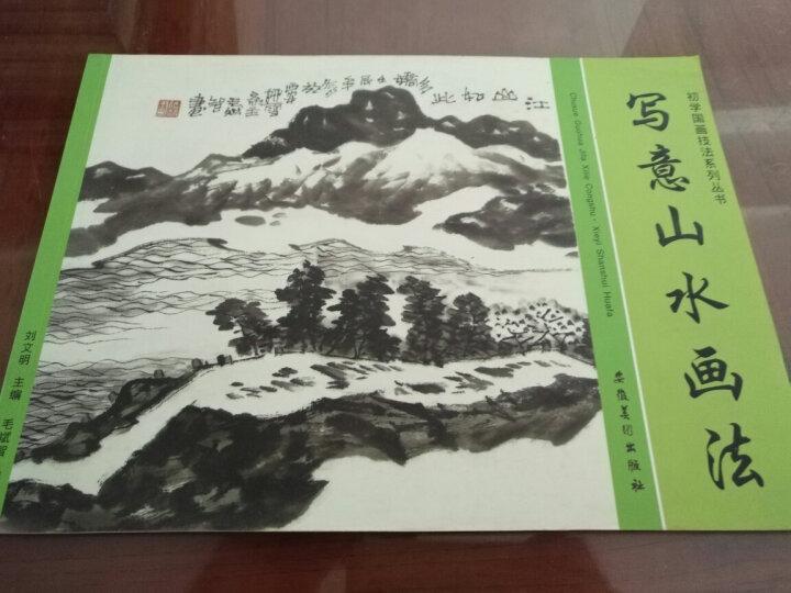 初学国画技法系列丛书:写意山水画法 晒单图