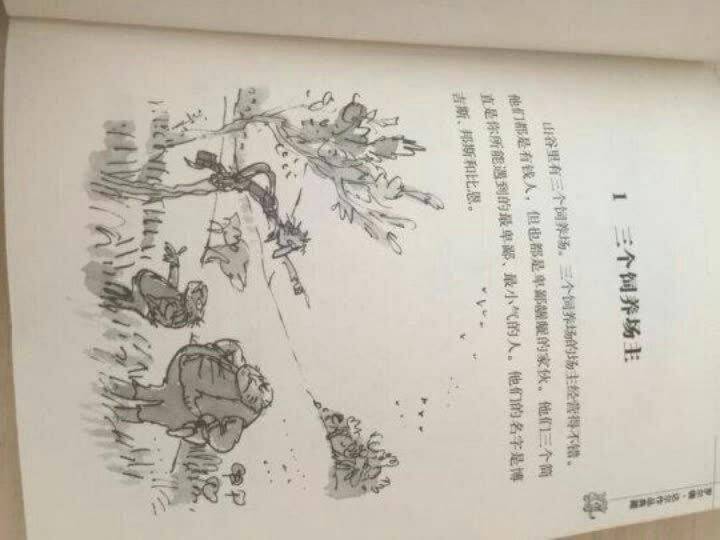 新版林格伦作品选集 美绘版-铁哥们儿擒贼记 晒单图