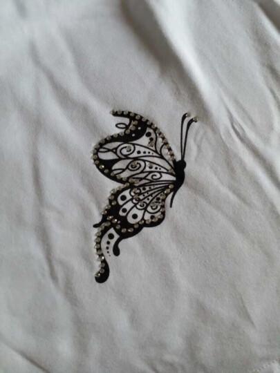柠檬初上 T恤女短袖夏装新款韩版女装大码上衣蕾丝显瘦女士棉体恤 N0001 白色 M 晒单图