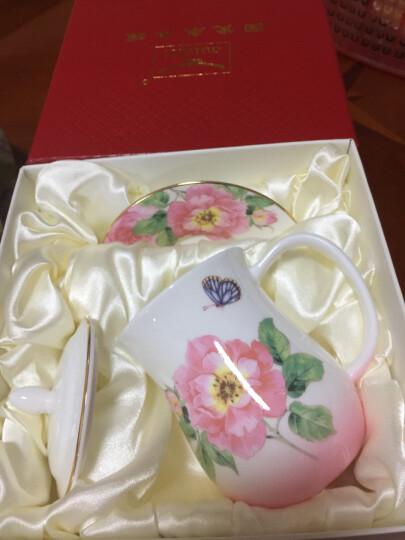 auratic 国瓷永丰源渐变粉骨瓷茶杯陶瓷带盖杯套装水杯中国风杯子 渐变绿-912003228047 晒单图
