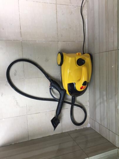 商用 家用蒸汽清洁机高温高除压甲醛治理熏蒸机汽车清洗机洗车机油  蒸汽洗车机 晒单图