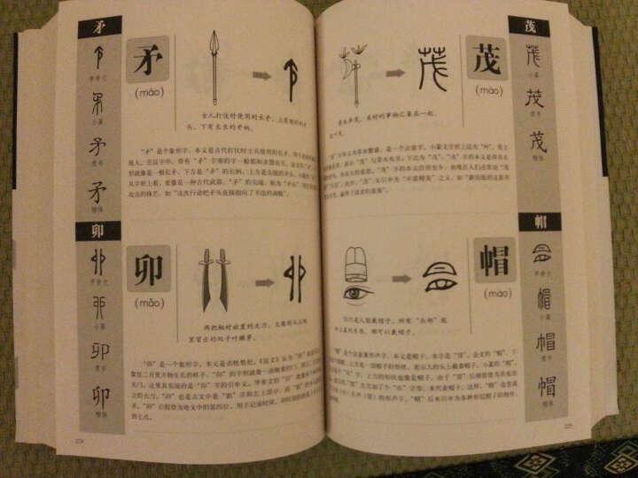 画说汉字(1000个汉字的故事图解说文解字) 晒单图