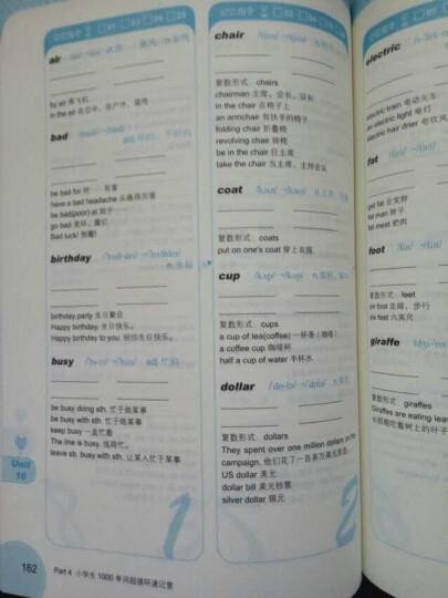 1分钟英语快餐丛书·小学生1000单词一学就会:发音、单词双突破(循环速记版) 晒单图