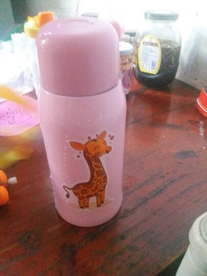 爱宝熊(IBOOLBEAR) 儿童保温杯宝宝保温杯  带吸管三用316不锈钢超长保温防漏 蓝色海豚 晒单图