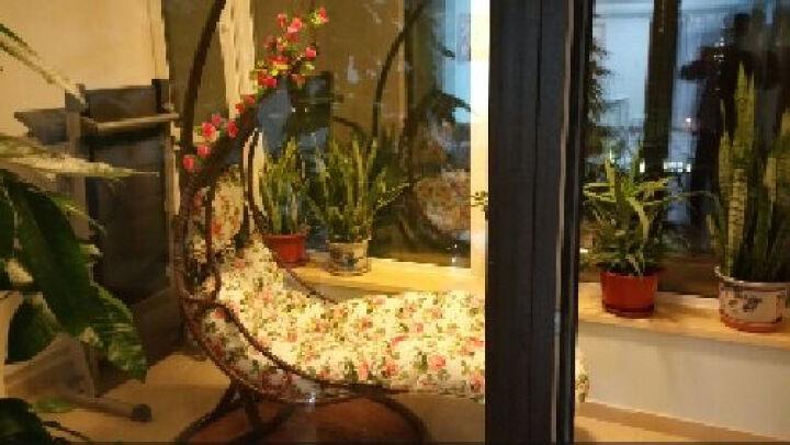 家友福 吊篮 阳台躺卧形挂椅秋千 室内户外休闲藤椅摇摇椅家具 咖啡色+红玫瑰坐垫 晒单图