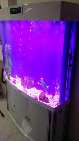E家E缸 鱼缸客厅中型底滤水族箱亚克力生态鱼缸水族箱1米 黑色 奢华套餐 (干湿分离底滤)单弧型80cm 晒单图