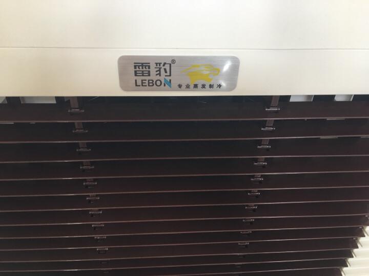雷豹(LEBON) 工业冷风机单冷空调扇制冷风机商用网吧餐厅厂房工厂冷风扇 【450W 15000风量 机械款】6000 晒单图