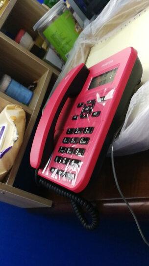 摩托罗拉(Motorola)CT202C固定有绳电话机座机来电显示免电池免提办公商务家用欧式时尚有线座机(红色) 晒单图