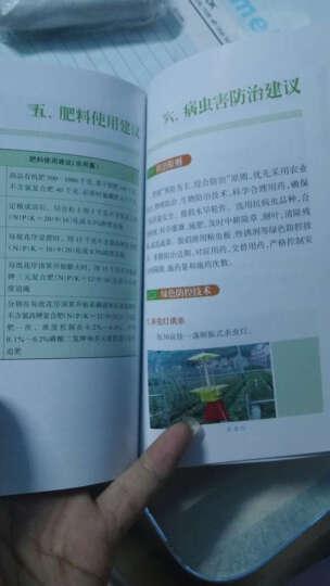 图说种植业标准化丛书:草莓全程标准化操作手册 晒单图