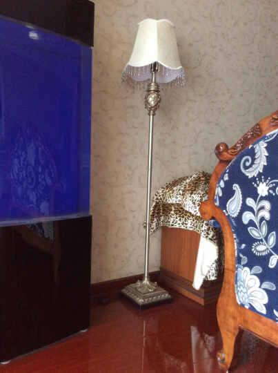 络曼(LUOMAN) 欧式落地灯美式落地灯客厅落地灯卧室落地台灯欧式床头书房 方格灯罩EA2035+EA2034B套餐价 晒单图