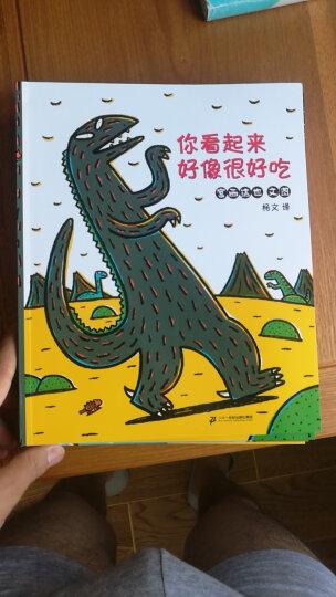 蒲蒲兰绘本馆·宫西达也温馨恐龙故事系列:永远永远爱你 晒单图