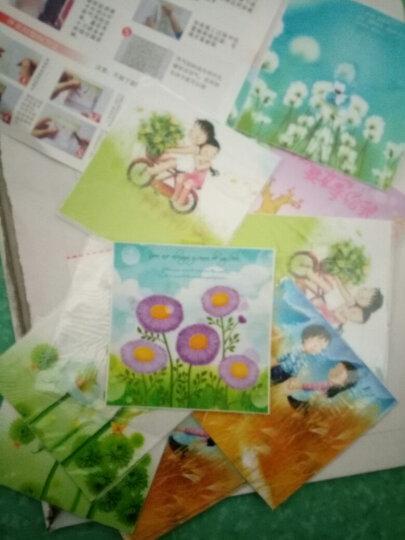 吉朵芸 花藤类精美创意开关贴墙贴卧室开关装饰贴纸可爱彩色花卉开关贴纸 玫瑰花瓣 晒单图