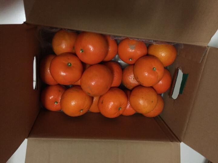 宏辉果蔬 新高梨 6个 净重约2kg 自营水果 晒单图
