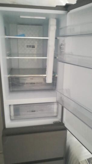 海尔(haier)海尔三门冰箱273升 风冷无霜 节能静音家用电冰箱 BCD-273WDCG 新品 晒单图