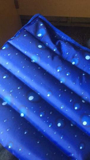 合欢树 冰袋冰垫坐垫夏天季 降温加厚办公室凉垫汽车座椅垫学生椅垫冰凉水垫水袋 深蓝小花 36*36cm 晒单图