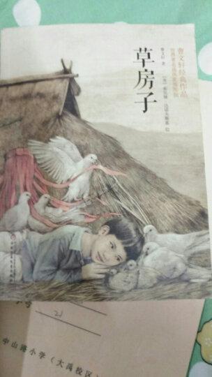 曹文轩经典作品:草房子(世界著名插画家插图版) 晒单图