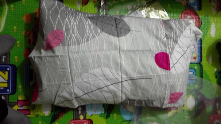 【赠品单拍不发货】丝煌纯棉面料高弹纤维枕芯 正方形55x55cm 单只 晒单图