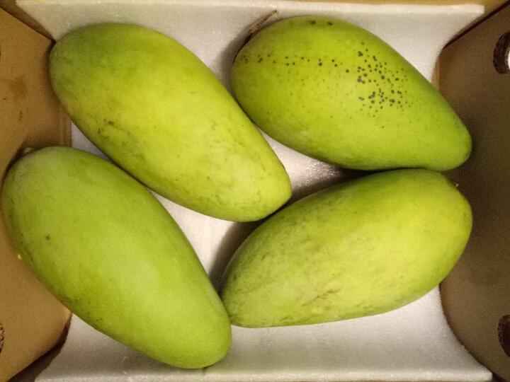 湾岛家 越南进口大青芒果 2.5kg 单果1斤以上 晒单图