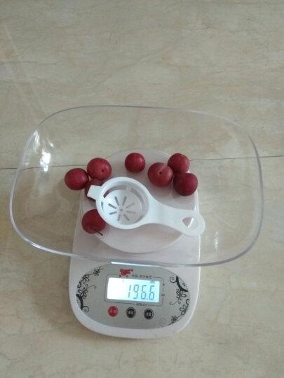 凯丰 电子称厨房秤 烘焙电子秤0.1g高精度天平秤 珠宝秤迷你克称精准台秤克秤 食物食品称 3kg/0.1g浪漫粉+送托盘量杯 晒单图