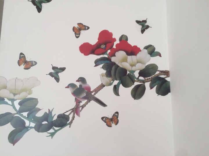 橘子燕 手绘国画牡丹墙贴 卧室电视背景床头壁画贴 可移除书房背景墙自粘装饰贴 富贵鸟 晒单图