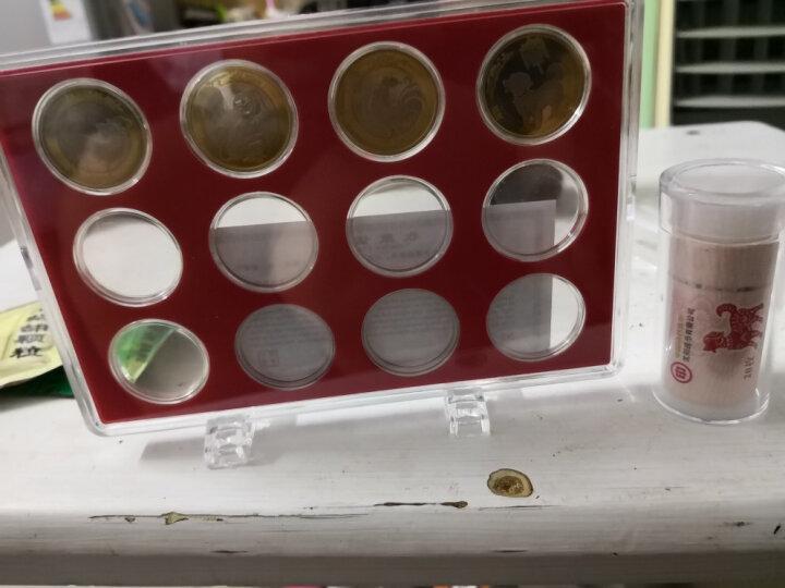 卷币筒整卷流通纪念币圆筒改革开放币猪年生肖币保护盒硬币桶钱币收藏盒 狗年猪年卷币筒 晒单图