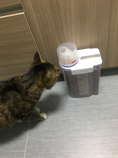 贝石 家用储米桶 密封储米箱量米桶 杂粮储物罐收纳盒 2KG 家用量米桶 晒单图
