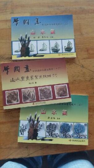学国画(套装1-13册) 晒单图