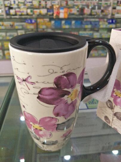 爱屋格林 手绘陶瓷马克杯 情侣艺术咖啡杯 带盖杯子 水杯 500ML 礼盒装咖啡时光 3LTM016L 晒单图