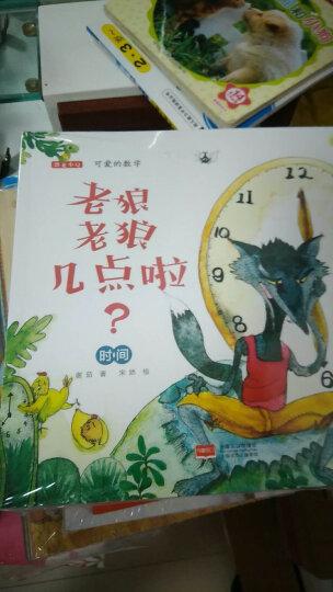 多元智能国际版:IQ、CQ、EQ潜能开发游戏大书(5岁)(套装全三册) 晒单图