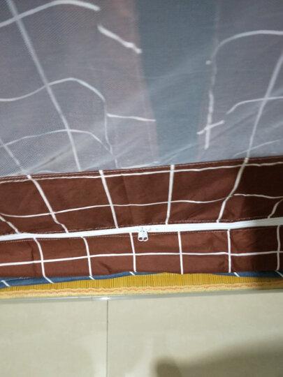YEJING2020新款大学生蚊帐子母床蚊帐遮光布防尘顶宿舍寝室上铺下铺帘子透气两用蚊帐拉链床帘 一  (遮光套餐) 告白气球  0.9米上铺】宽0.9*长1.9*高1.1米 晒单图