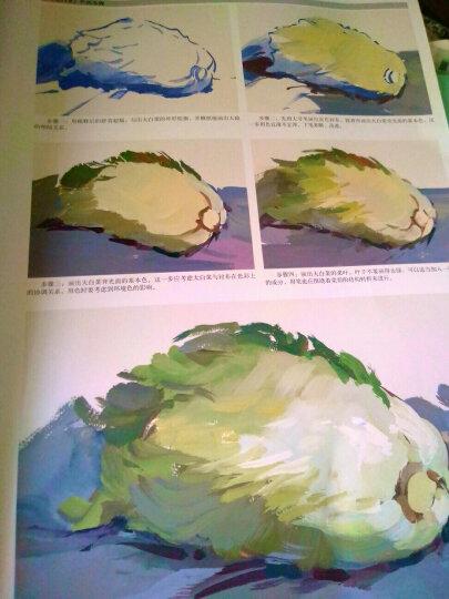 形·色:王磊水粉静物应试教程 晒单图