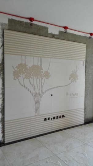 现代简约电视背景墙瓷砖客厅微晶石瓷砖背景墙影视墙艺术拼镜边框 高温烧微晶石+幻彩0.1/平 晒单图